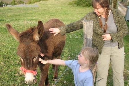 Esel, Katharina und Juliane