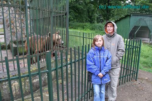 Wildpark von Dragos Voda - armer Bär in kleinem Käfig