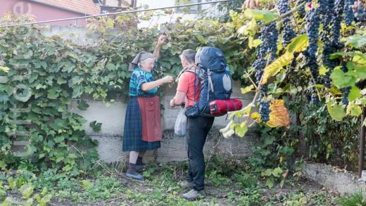 Rumänische Gastfreundschaft: Man fragt nach einem Apfel, dann hat man eine ganze Tüte voll Obst...