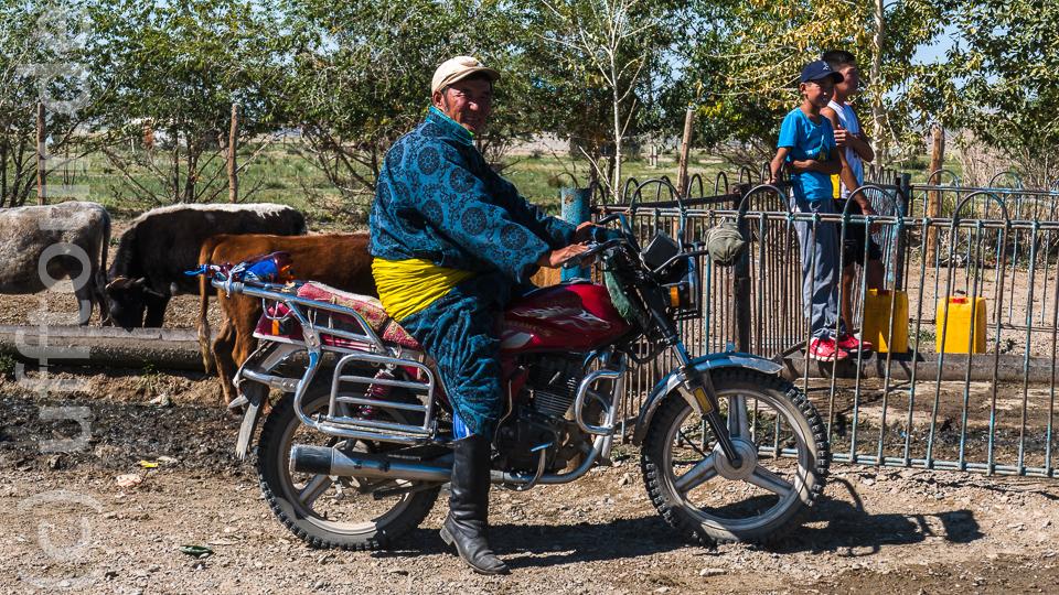 Er kommt extra mit seinem Mopped in traditioneller Kleidung. Im Hintergrund übernehmen die Kühe die Resteverwertung.